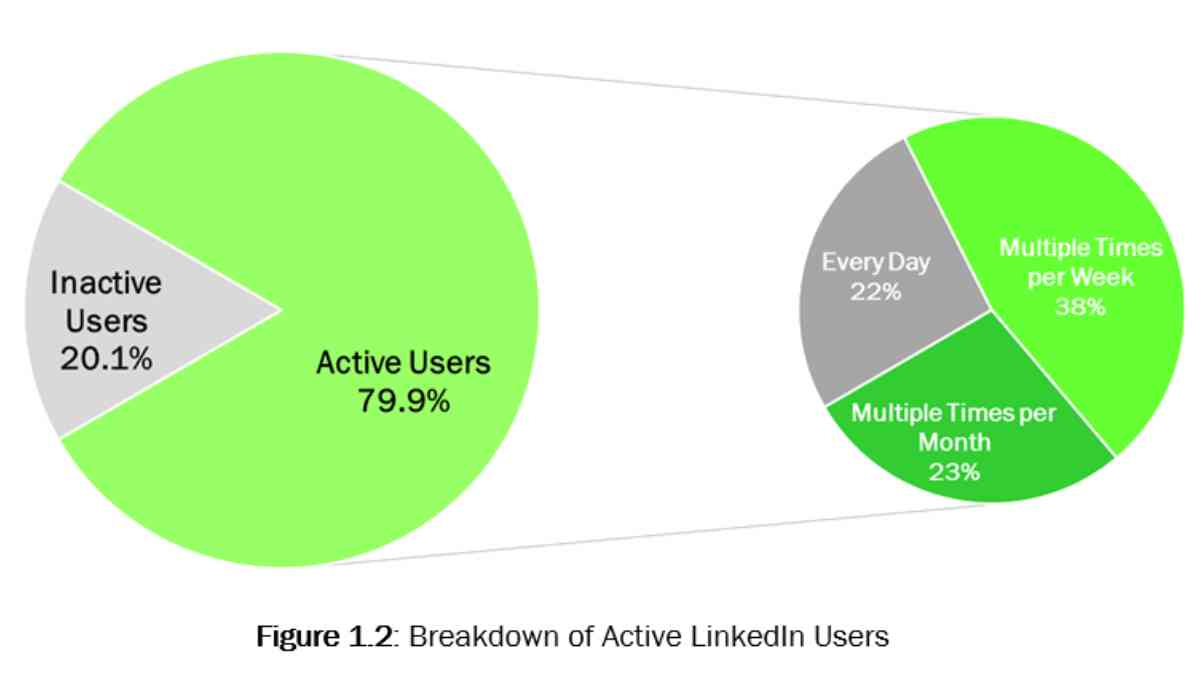 FrogDog Research Report: How C-level Executives Really Use LinkedIn