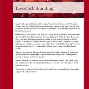 Branding Guide //